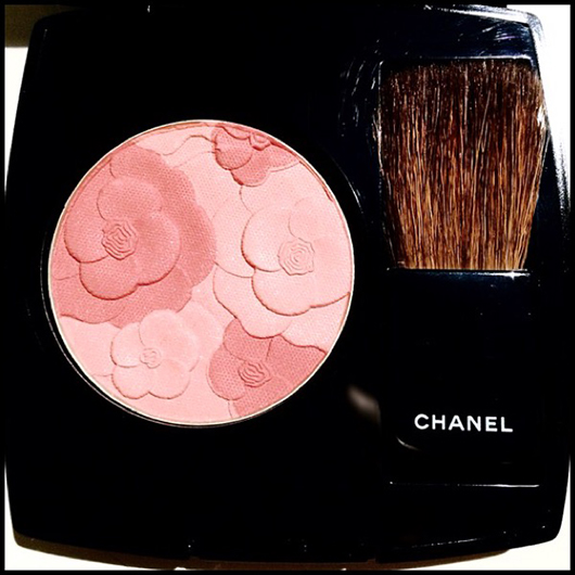 Jardin de chanel alessio nesi proprietexclusive for Jardin de chanel blush 2015 kaufen